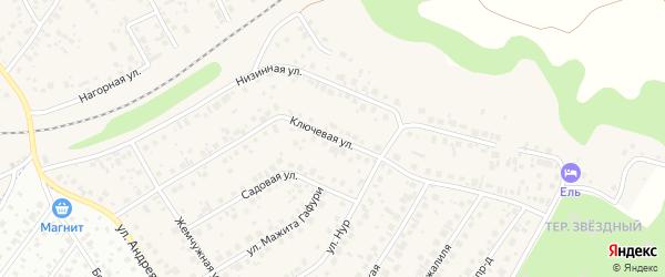 Ключевая улица на карте села Чесноковки с номерами домов