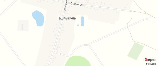 Старая улица на карте деревни Ташлыкуля с номерами домов