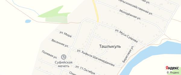 Улица Зайнуллы Расулова на карте деревни Ташлыкуля с номерами домов