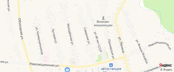 Северная улица на карте села Мишкино с номерами домов