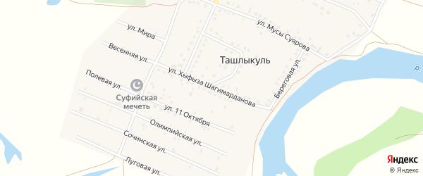 Улица Хыфыза Шагимарданова на карте деревни Ташлыкуля с номерами домов