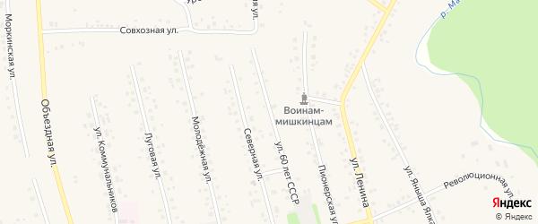 Улица 60 лет СССР на карте села Мишкино с номерами домов