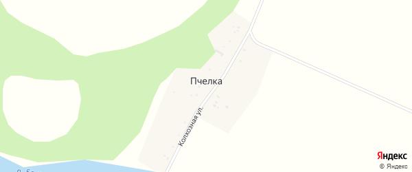 Горная улица на карте деревни Пчелки с номерами домов