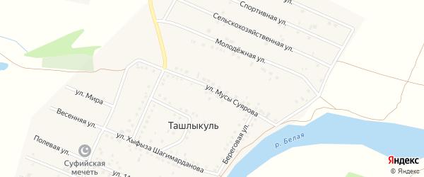 Улица Мусы Суярова на карте деревни Ташлыкуля с номерами домов