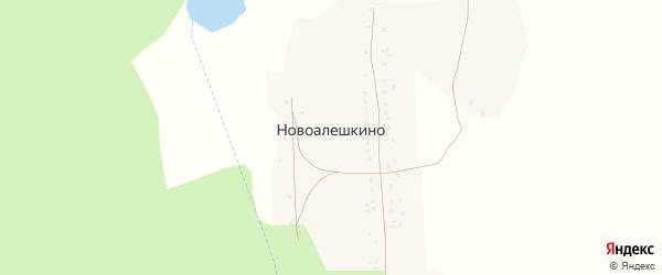 Лесная улица на карте деревни Новоалешкино с номерами домов