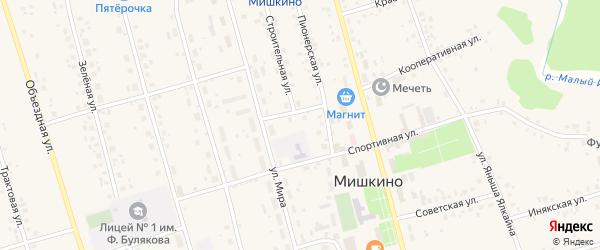Отрадная улица на карте села Мишкино с номерами домов