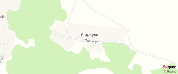 Лесная улица на карте деревни Утаркуля с номерами домов