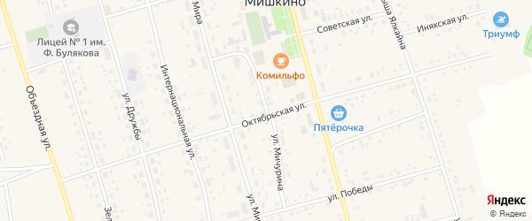 Улица Мичурина на карте села Мишкино с номерами домов