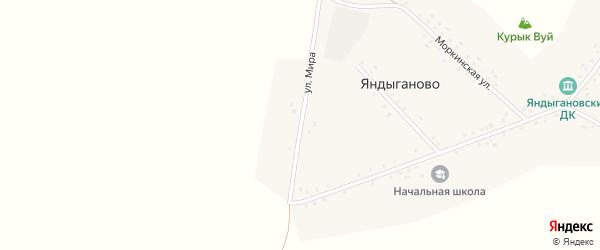 Улица Мира на карте деревни Яндыганово с номерами домов
