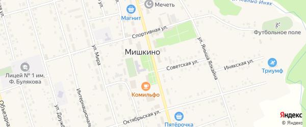 Улица Ленина на карте села Мишкино с номерами домов