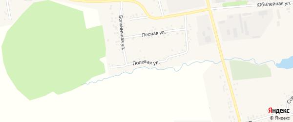 Полевая улица на карте села Мишкино с номерами домов