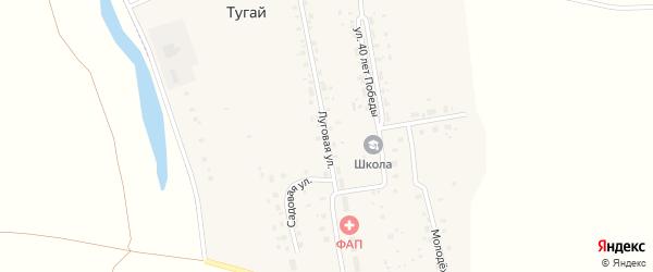 Луговая улица на карте деревни Евграфовки с номерами домов