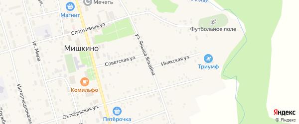 Улица Яныша Ялкайна на карте села Мишкино с номерами домов