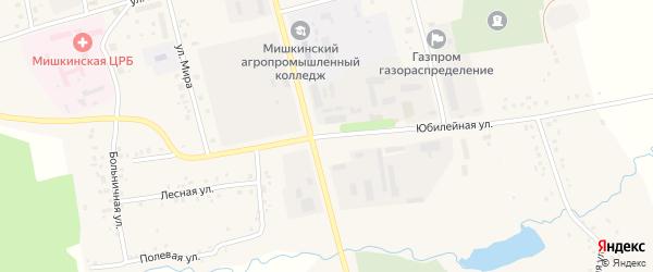 Юбилейная улица на карте села Мишкино с номерами домов