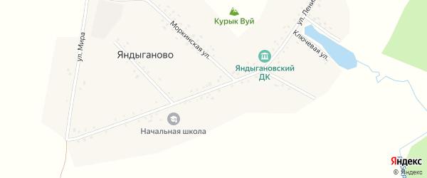 Улица Ленина на карте деревни Яндыганово с номерами домов
