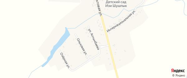 Улица Алтынбаева на карте деревни Староваськино с номерами домов