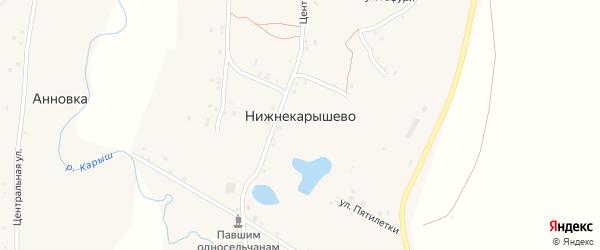 Центральная улица на карте села Нижнекарышево с номерами домов