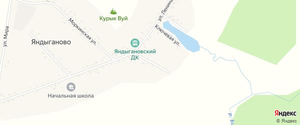 Мостовая улица на карте деревни Яндыганово с номерами домов