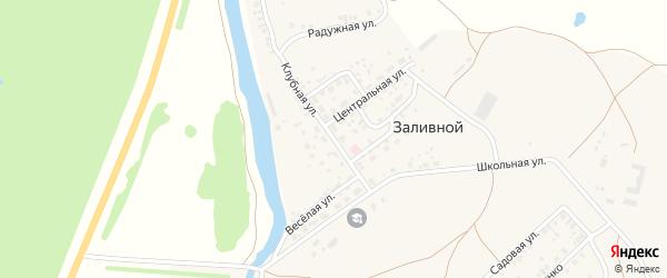 Клубная улица на карте села Заливной с номерами домов