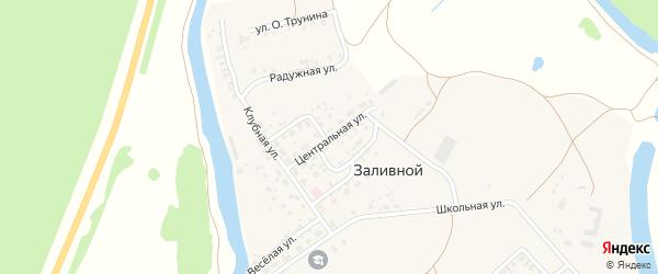 Центральная улица на карте села Заливной с номерами домов