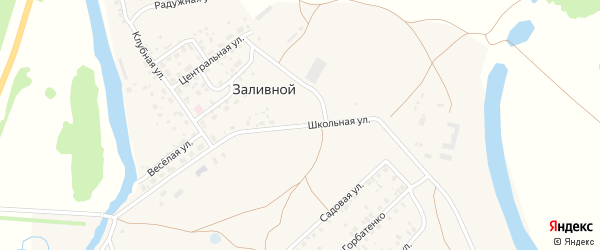 Школьная улица на карте села Заливной с номерами домов