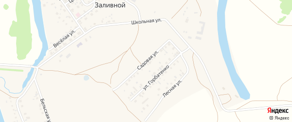Садовая улица на карте села Заливной с номерами домов