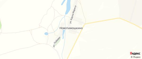 Карта деревни Новотимошкино в Башкортостане с улицами и номерами домов