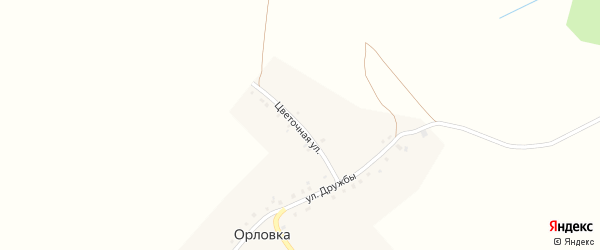 Цветочная улица на карте села Орловки с номерами домов