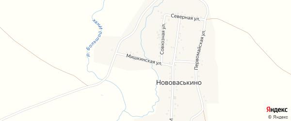 Мишкинская улица на карте деревни Нововаськино с номерами домов