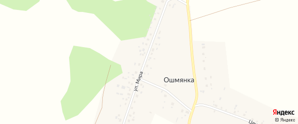 Центральная улица на карте деревни Ошмянки с номерами домов