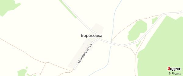 Центральная улица на карте деревни Борисовки с номерами домов