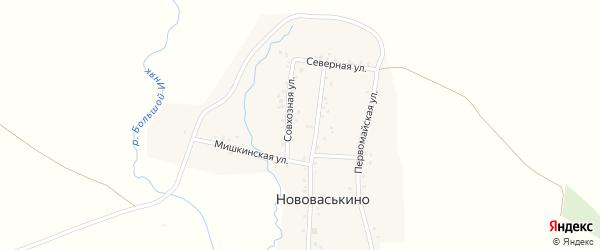 Совхозная улица на карте деревни Нововаськино с номерами домов