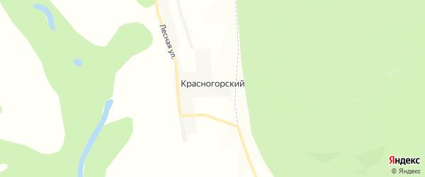 Карта Красногорского хутора в Башкортостане с улицами и номерами домов