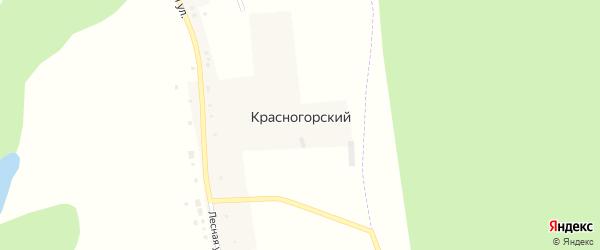 Лесная улица на карте Красногорского хутора с номерами домов