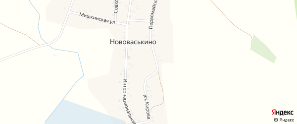 Первомайская улица на карте деревни Нововаськино с номерами домов