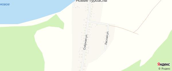 Озерная улица на карте деревни Новые Турбаслы с номерами домов