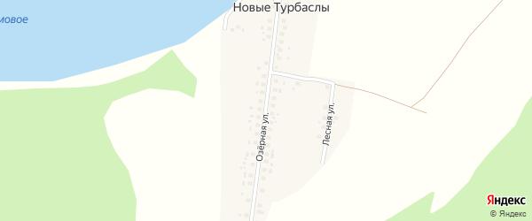 Лесная улица на карте деревни Новые Турбаслы с номерами домов