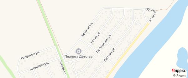 Новая улица на карте деревни Алексеевки с номерами домов
