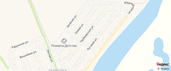 Тарбеевская улица на карте деревни Алексеевки с номерами домов