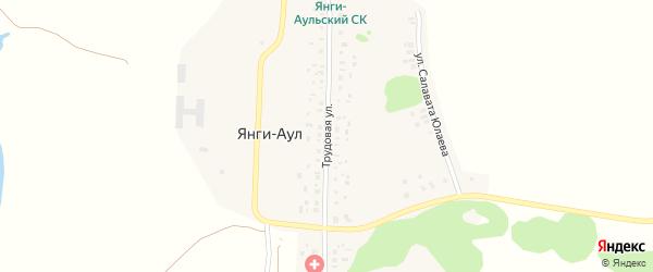 Трудовая улица на карте деревни Янги-Аула с номерами домов
