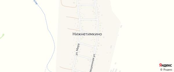 Молодежная улица на карте деревни Нижнетимкино с номерами домов