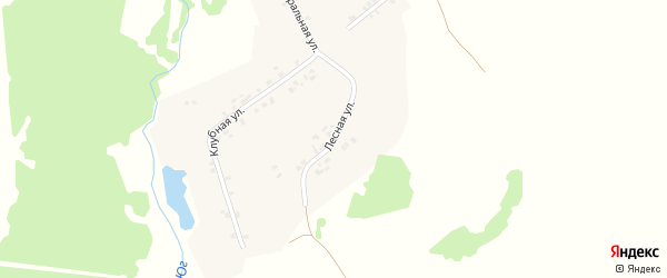 Лесная улица на карте деревни Бигинеево с номерами домов