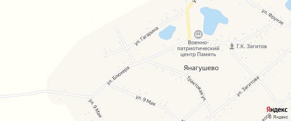 Улица Блюхера на карте села Янагушево с номерами домов
