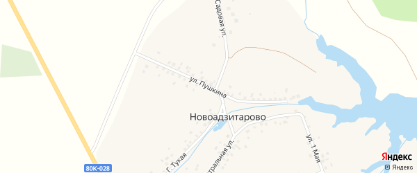Улица Пушкина на карте деревни Новоадзитарово с номерами домов