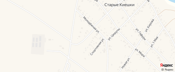 Молодежный переулок на карте деревни Старые Киешки с номерами домов