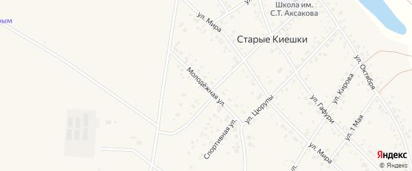 Молодежная улица на карте деревни Старые Киешки с номерами домов