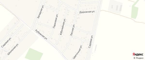 Лесная улица на карте деревни Старые Киешки с номерами домов
