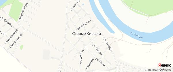 Карта деревни Старые Киешки в Башкортостане с улицами и номерами домов