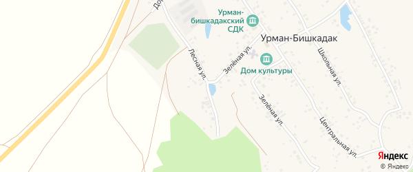 Лесная улица на карте села Урмана-Бишкадака с номерами домов