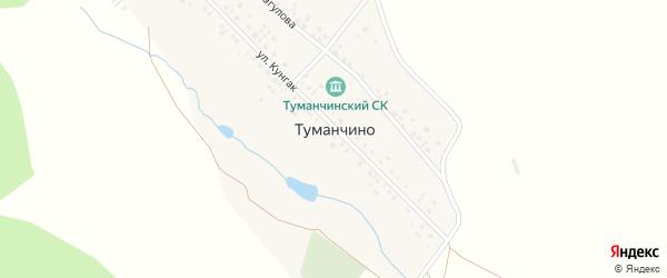 Улица Кунгак на карте деревни Туманчино с номерами домов